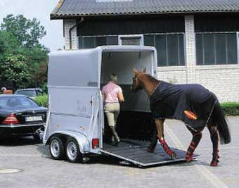 Horse Loading, Böckmann Horse Trailers, Horse trailers, Maple Lane Equestrian Trailers